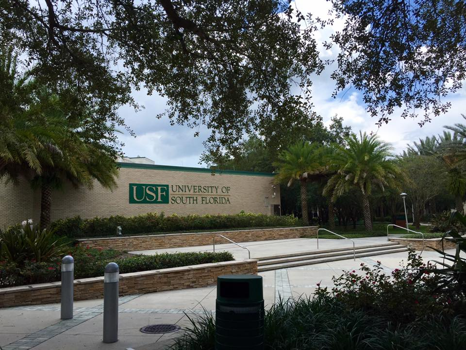 University of South Florida Exterior view